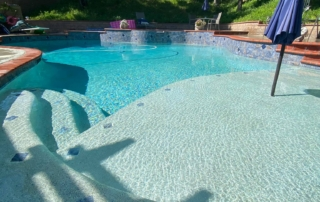 Finest Finish Radiant Fusion Pearl pool with baja shelf