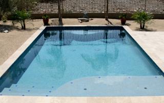 Finest Finish pool with baja shelf, palm trees Kona Blue