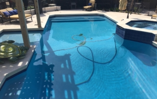 Finest Finish Sea blue pool with turtle theme